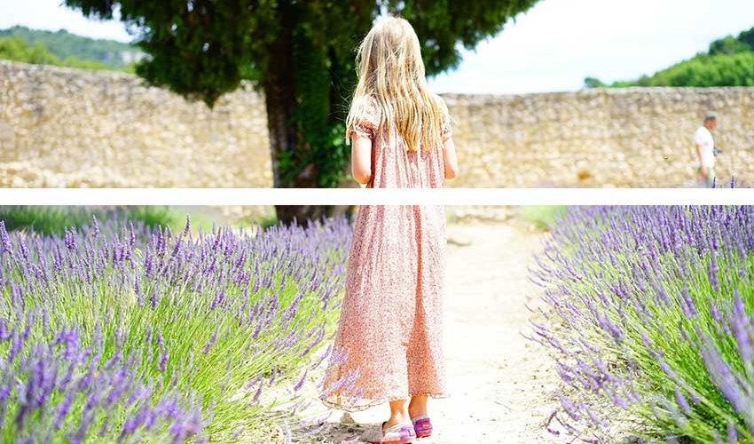 Происхождение слов skirt, shirt, short, shorts и шорты.