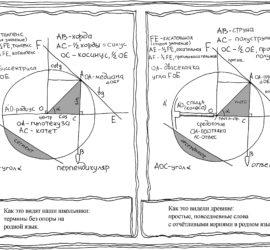 Этимология слов тангенс, гипотенуза, катет, радиус