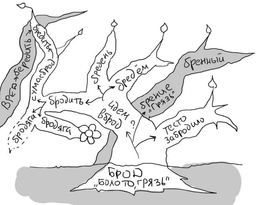 Общая картина развития слова брод